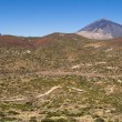 Arid landscape in Tenerife - Stock Photo