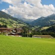 Stock Photo: Alpbachtal
