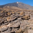 Pahoehoe lava at mount Teide - Stock Photo