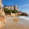 Castle of Tamarit from Cala Jovera — Stock Photo #26212519