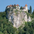 Perched castle of Bled — Stock Photo