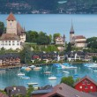 Bay of Spiez — Stock Photo