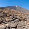Pahoehoe lava at foot of Teide — Stock Photo