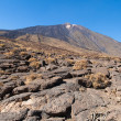 Pahoehoe lava at foot of Teide — Stock Photo #37006825