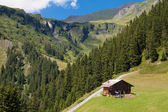 Hut in the Swiss Alps — Stock Photo