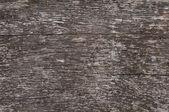 Wood backgroud texture — Stock Photo