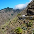 View from La Gomera — Photo