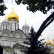 Archangel's cathedral and Assumption cathedral. Moscow Cremlin — Стоковая фотография