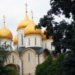Moscow Kremlin. Assumption Cathedral. UNESCO World Heritage Site. — Foto de stock #12462579