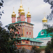 Church Domes in Trinity Sergius Lavra — Stockfoto