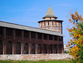 Beautiful Kremlin tower and wall in Kolomna, Moscow region, Russia. — Stock Photo