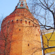 Moscow Kremlin tower — Stock Photo #19233225