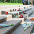 Flower buds by Unknown soldier tomb in Moscow — Stock Photo