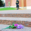 Flowers by the unknown soldier tomb in Moscow — Stock Photo