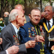 War veterans celebrate the Victory day. — Stock Photo