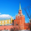 Moscow Kremlin Tower and wall. — Stock Photo #26083717