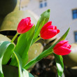 Stock Photo: Victory day installation. Red tulips.