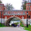 Architecture of Tsaritsyno park, Moscow. — Stock Photo