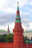 Moscow Kremlin panorama in summer. — Stock Photo