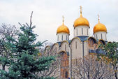 Assumption church in Moscow Kremlin. — Stock Photo