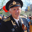 Постер, плакат: Portrait of a war veteran