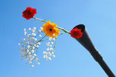 Live flowers stick out of a gun barrel. — Stock Photo