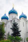 Kyrkan kupoler i trinity sergius lavra — Stockfoto
