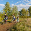 Active family on bikes cycling outdoors — Stock Photo #14533981