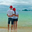 Stock Photo: Christmas tropical vacation