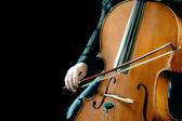 Cello playing cellist — Stock Photo