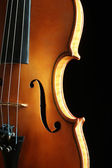 Violin orchestra musical instruments — Stock Photo