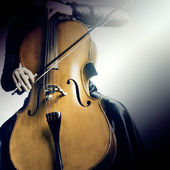 Cello musical instruments cellist — Stock Photo