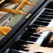 Stock Photo: Grand piano keys with hands