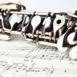 Classical music instruments oboe — Stock Photo
