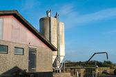 Ziarna silosy rolnicze — Zdjęcie stockowe