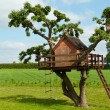 Beautiful creative tree house — Stock Photo