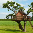 Photo: Beautiful creative tree house