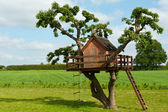 Beautiful creative tree house — Stock Photo