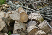 Pile of heavy wood logs for heating — Stock Photo