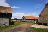 Traditional farm yard and barns — Stock Photo