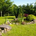 Beautiful classical garden fish pond gardening background — Stock Photo #47433149