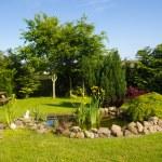 Beautiful classical garden fish pond gardening background — Stock Photo #47433153