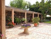Mediterranean style garden — Stock Photo