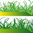Green grass labels - 图库矢量图片