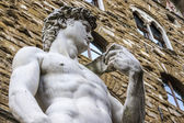 The David of Michelangelo — Stock Photo