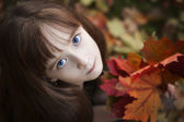 Little Girl Holding Maple Leaves looking at camera, on background from colo — Stock Photo