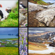 Icelandic landscapes collage — Stock Photo #51352767