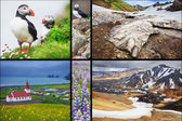 Icelandic landscapes collage — Stock Photo