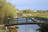 Irish River scene — Stock Photo