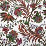 Elegant floral pattern — Stock Photo #10620277